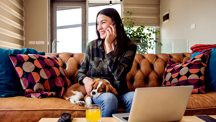 Woman working at home on couch with dog